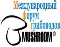 форум грибоводов